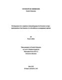Développement de la compétence technopédagogique des formateurs en ligne [ressource électronique] : expérimentation d'une formation à la webconférence en enseignement supérieur