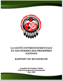 La santé environnementale et les femmes des Premières Nations [ressource électronique] : rapport de recherche