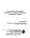 Tour d'horizon des pratiques prometteuses en réponse à la traite des personnes au Canada [ressource électronique]