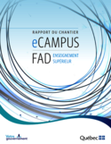 Rapport du chantier eCampus FAD [ressource électronique]